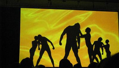 Amazing Shadows Schattentheater